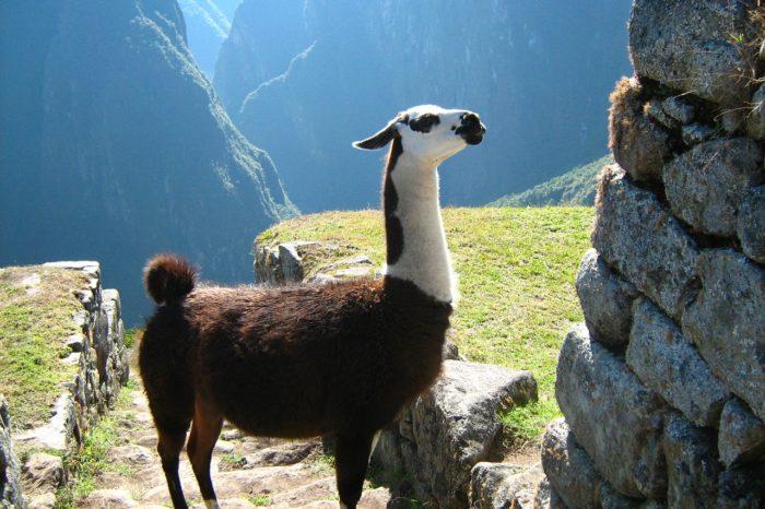 Cusco – Puno – Arequipa 8 Días / 7 Noches